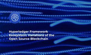Hyperledger Framework Ecosystem