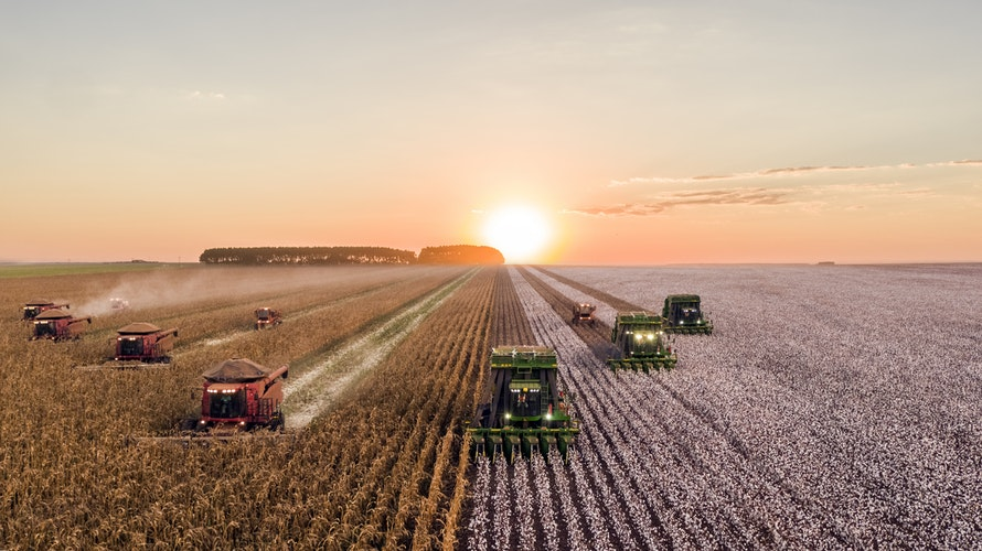 Blockchain for Supply Chain in Agriculture