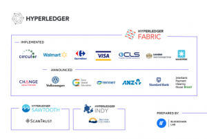 Hyperledger case studies